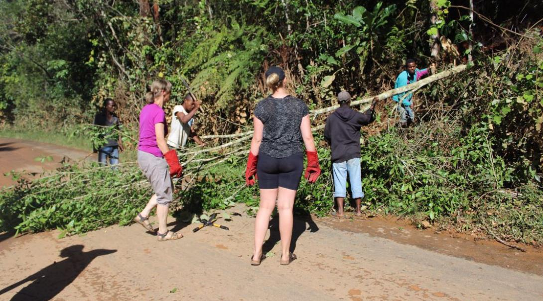 Projects Abroad conservation volunteers remove invasive plants in the rainforest as part of the Lemur research and protection project in Madagascar.